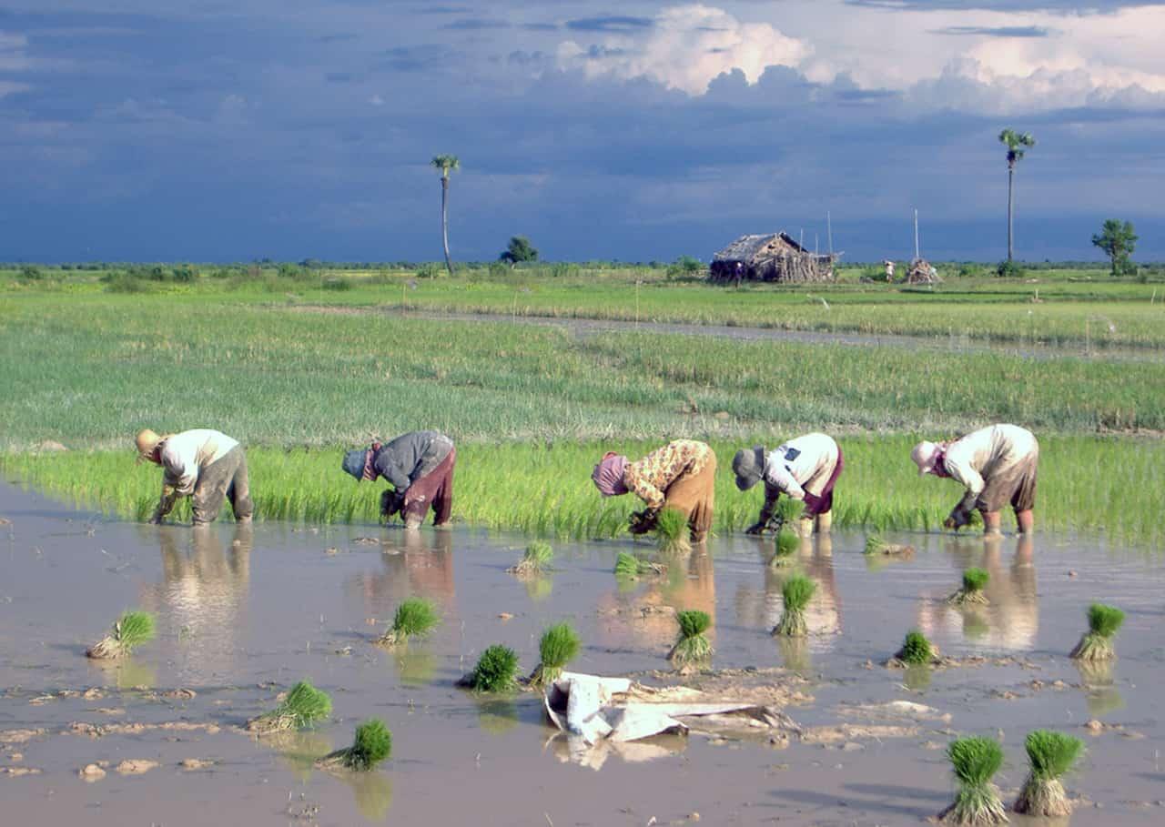 Het ongerepte binnenland van Cambodja