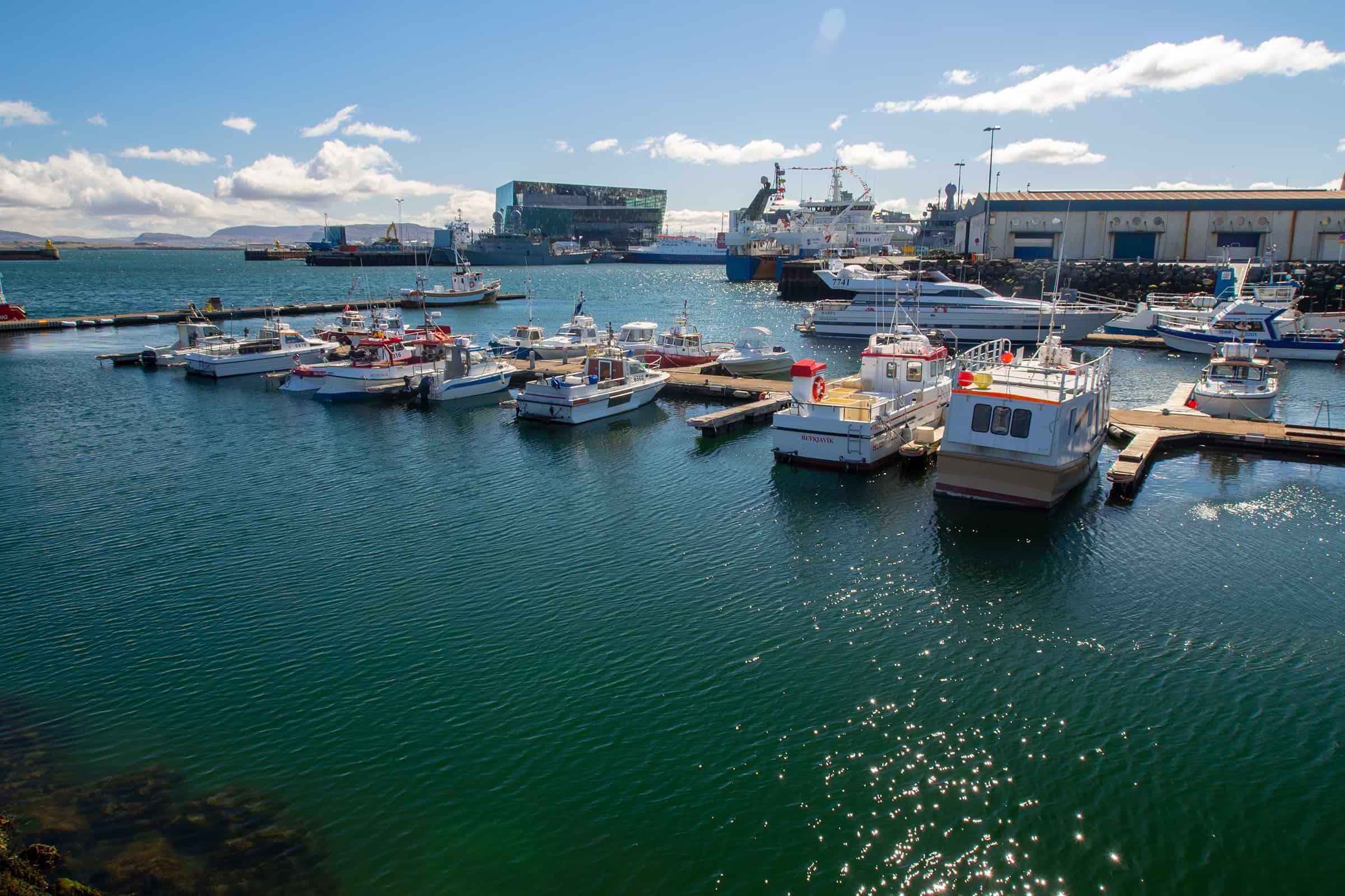 Haven van Reykjavik
