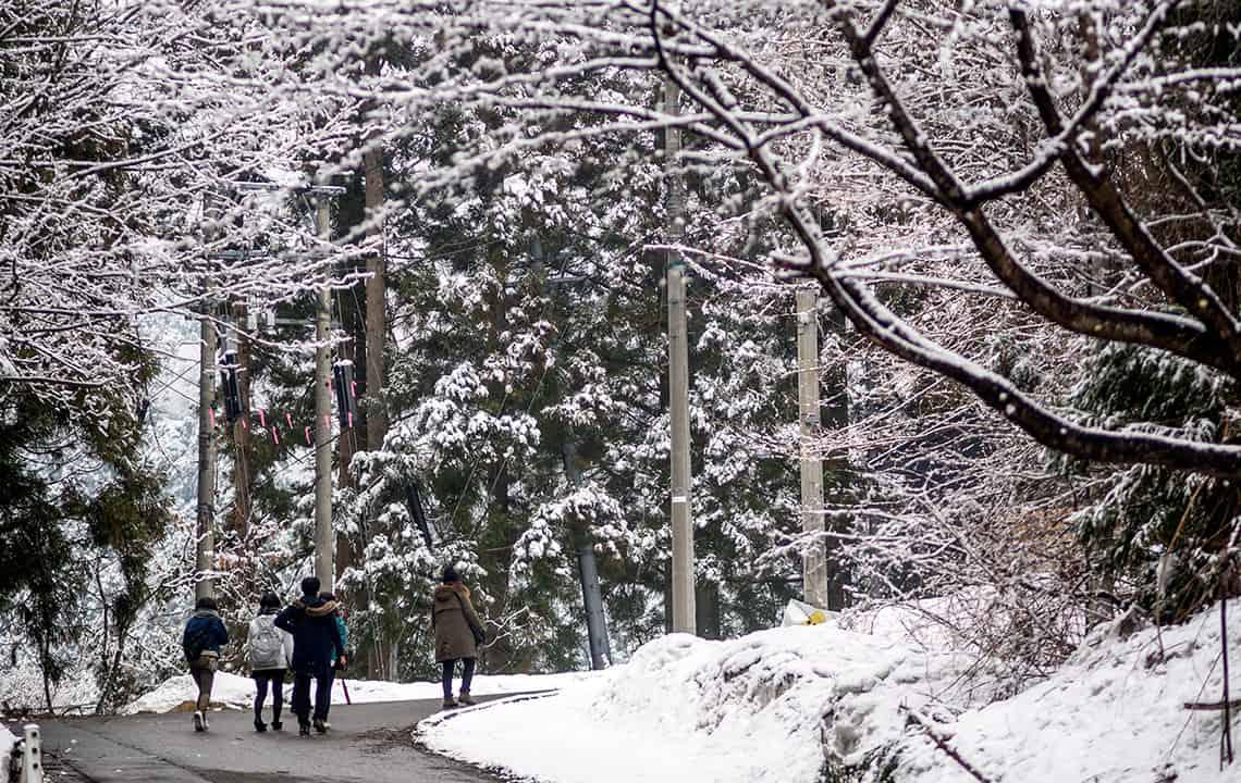 De weg naar Snow Monkey Park